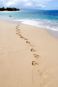 Tropical beach scene on a sunny day in Oahu, Hawaii