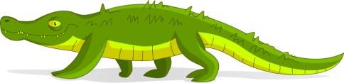 croc2