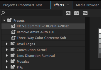 saving filmconvert premiere preset