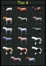 blackdesertonlinebreedinghorse6