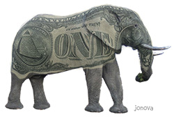 Grey elephant with dollar bill for skin