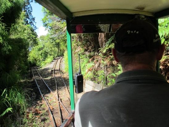 Driving Creek Railway