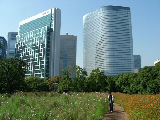 DSCF4978 Hama-rikyu Gardens