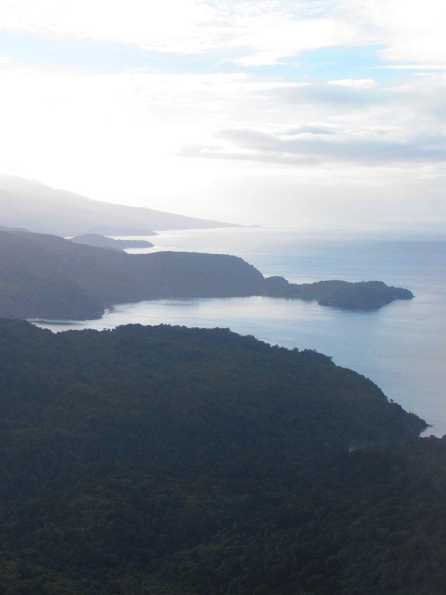 IMG_1825 Stewart Island