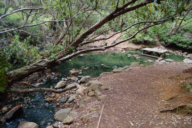 DSC_0276 Hot Springs Track