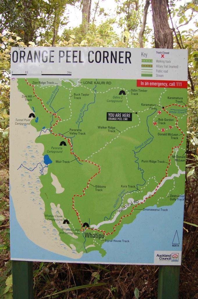 DSC_0155 Orange Peel Corner