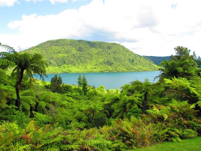 IMG_4444 Green Lake