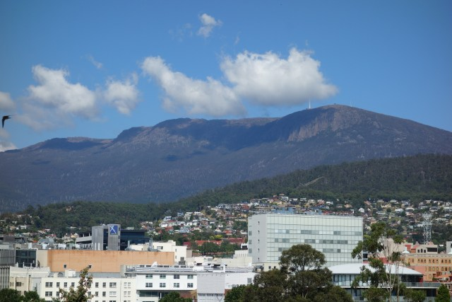 dsc01325-mt-wellington