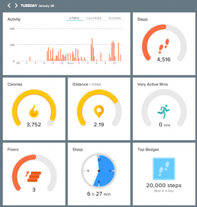Fitbit Force Statistics for January 28, 2014