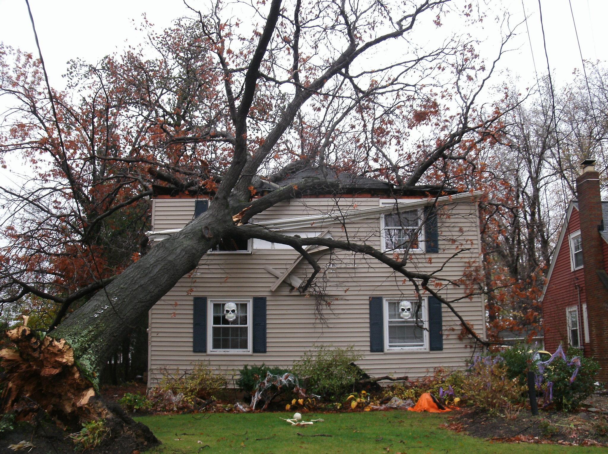 Free Photo Storm Damaged House