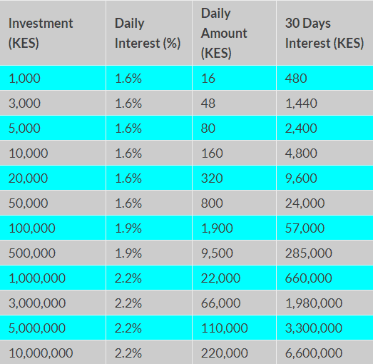 American quid investment table