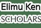 Application form for Elimu Scholarship