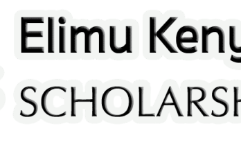 Application form for Elimu Scholarship