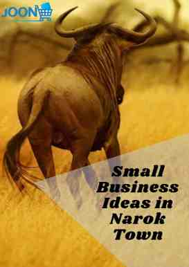 Small Business Ideas in Narok Town