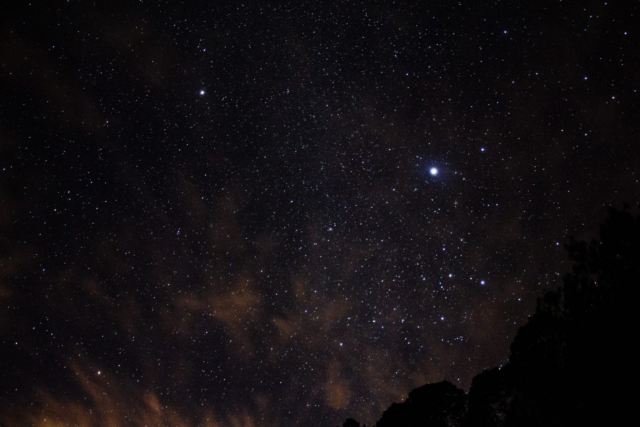 Bintang Malam (Evening Star)