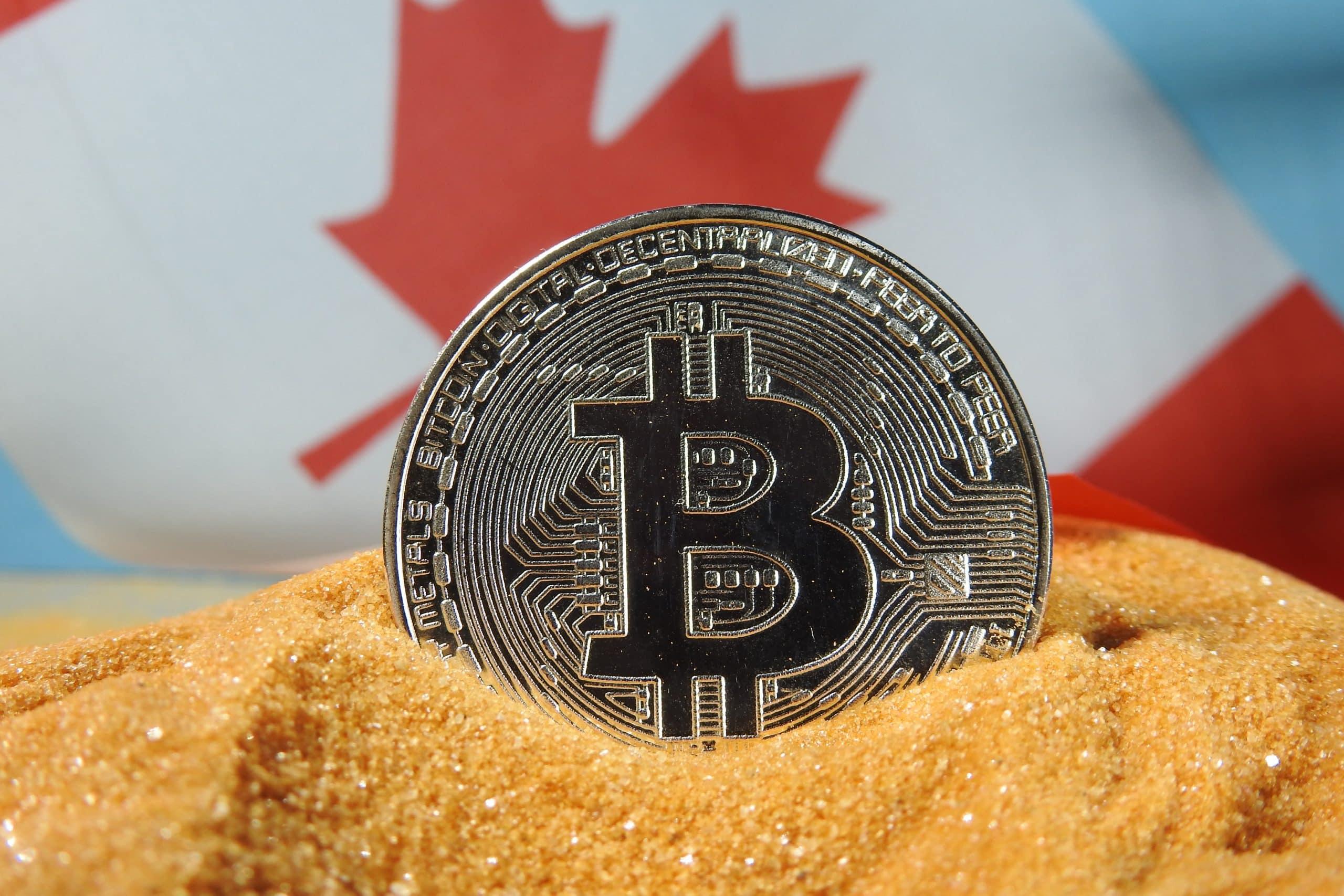 adresa bitcoin pentru primirea plăților opțiunea iq