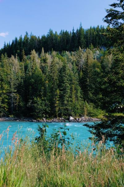JOOWBAR_CANADA_OUEST_ROAD_TRIP_WELLS_GRAY_HELMCKEN_FALLS_MOUNT_ROBSON-9