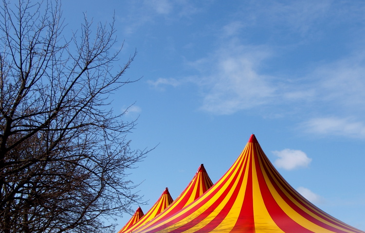circus-tent-top-by-john-nyberg