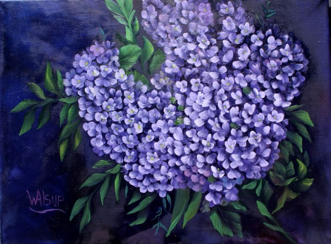 Lilacs - 002 Don Mader