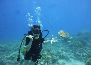 Diving in Aqaba - 2 Days Tour Jordan