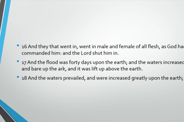 Biblical Series Vii Walking With God Noah And The Flood Transcript