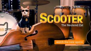 meet-scooter-new-tv-spot-btn