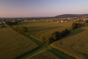 Round_Swamp_Farm_East_Hampton_Jordan_Bush_Photography_30 Agriculture