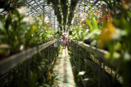 lancaster-pa-commercial-agricultural-farm-photographer-jordan-bush-photography-7 Agriculture
