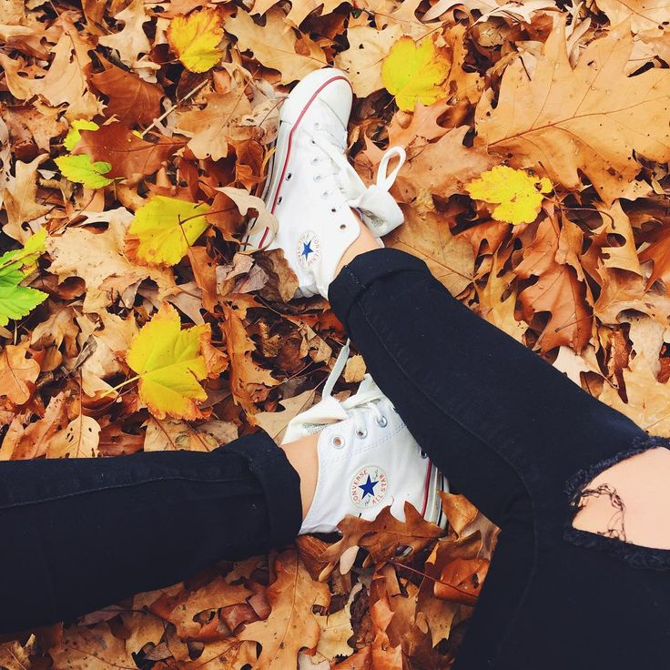 Image result for fall  photography