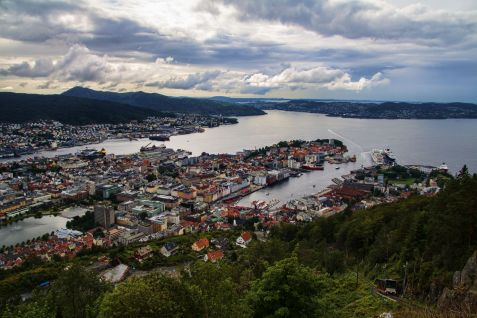 Bergen View Train