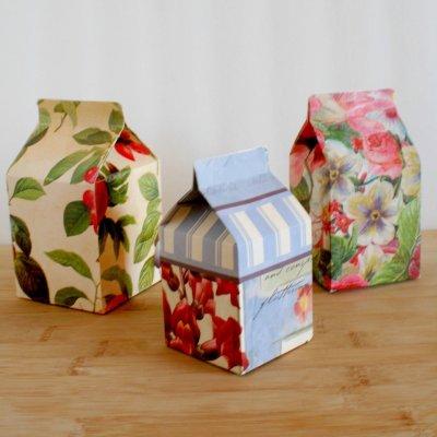 Summer time Milk Carton treat boxes