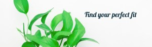 Green office plant against white background saying 'find your perfect fit'. If you're looking for online therapy in texas or online therapy in indiana, you've come to the right place. You can find your perfect fit with laura jordan!