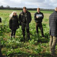 Fremtidens landbrug bør efterligne naturen
