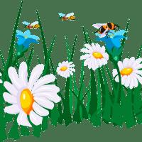 føtex og økologer uddeler blomsterfrø for at redde bierne
