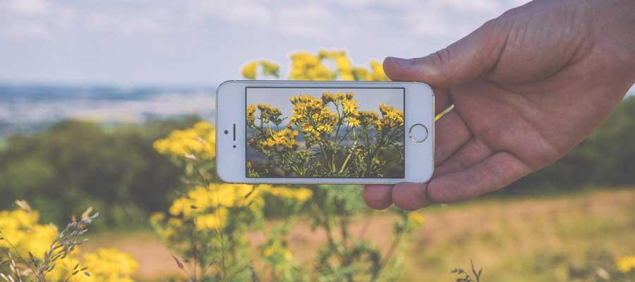 10 tips para optimizar las imágenes de tu página web