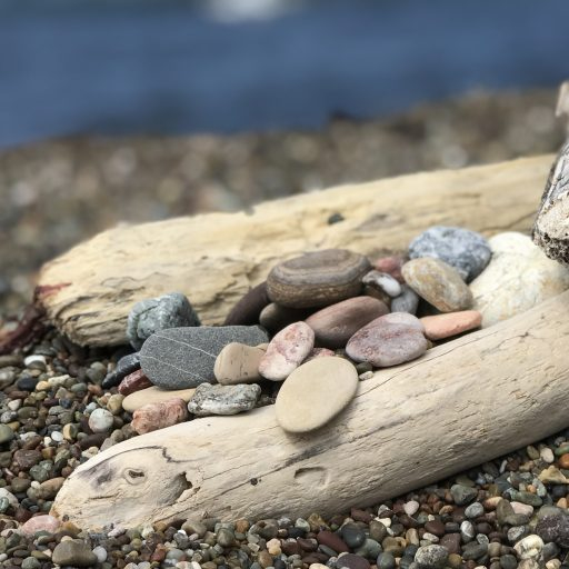 Pebbles and driftwood image