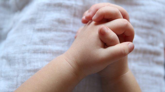 La Alquimia Y La Oración