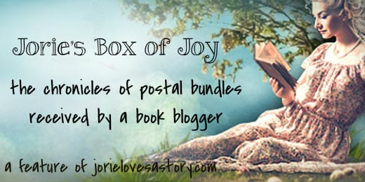 Jorie's Box of Joy | A Feature of Jorie Loves A Story