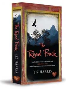 The Road Back by Liz Harris