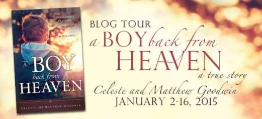The Boy from Heaven blog tour via Cedar Fort Publishing & Media