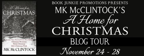 A Home for Christmas Blog Tour via Book Junkie Promotions