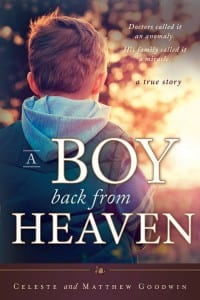 A Boy Back from Heaven by Celeste and Matthew Goodwin
