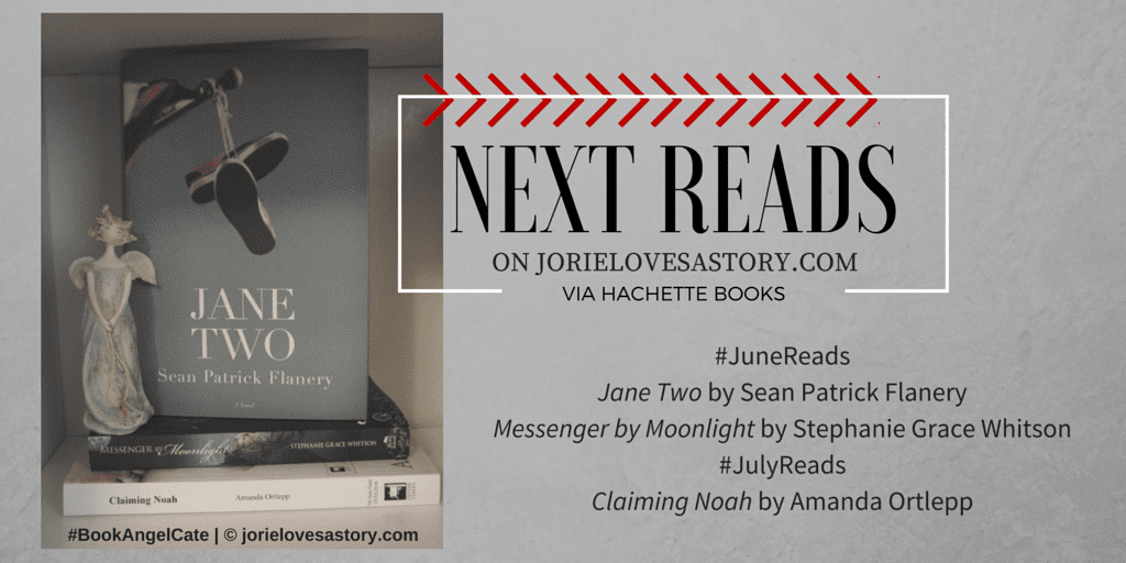 Next Reads via Hachette Books banner created by Jorie in Canva. Book Photography Credit: Jorie of jorielovesastory.com.