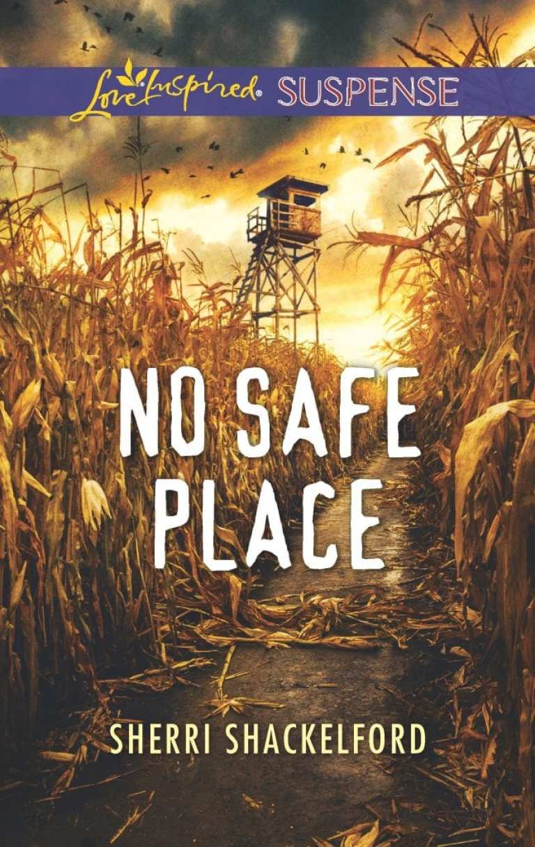 "Blog Book Tour | feat. #LoveINSPIRED Suspense novelist Sherri Shackelford's ""No Safe Place"""