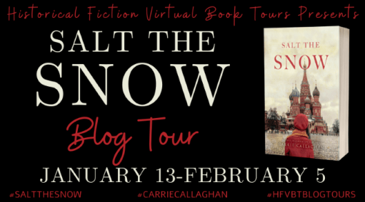 Salt the Snow blog tour banner provided by HFVBTs.