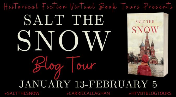 Salt the Snow blog tour banner provided by HFVBTs.