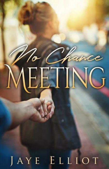 No Chance Meeting by Jaye Elliot