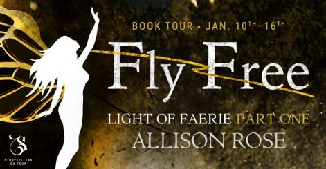 Fly Free blog tour banner provided by Storytellers on Tour and is used with permission.