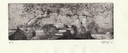 Ätzradierung, Wetterkiefer, ca. 6 x 15 cm