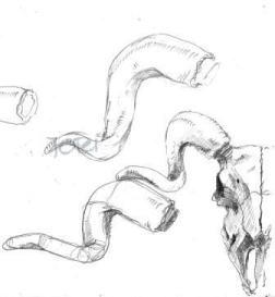 Fingerübung (Bleistift)